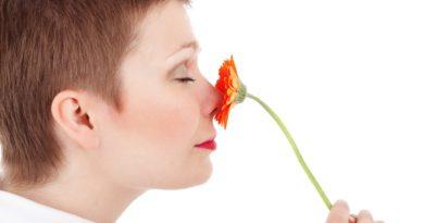 Rapporto dei nostri 5 sensi con le piante